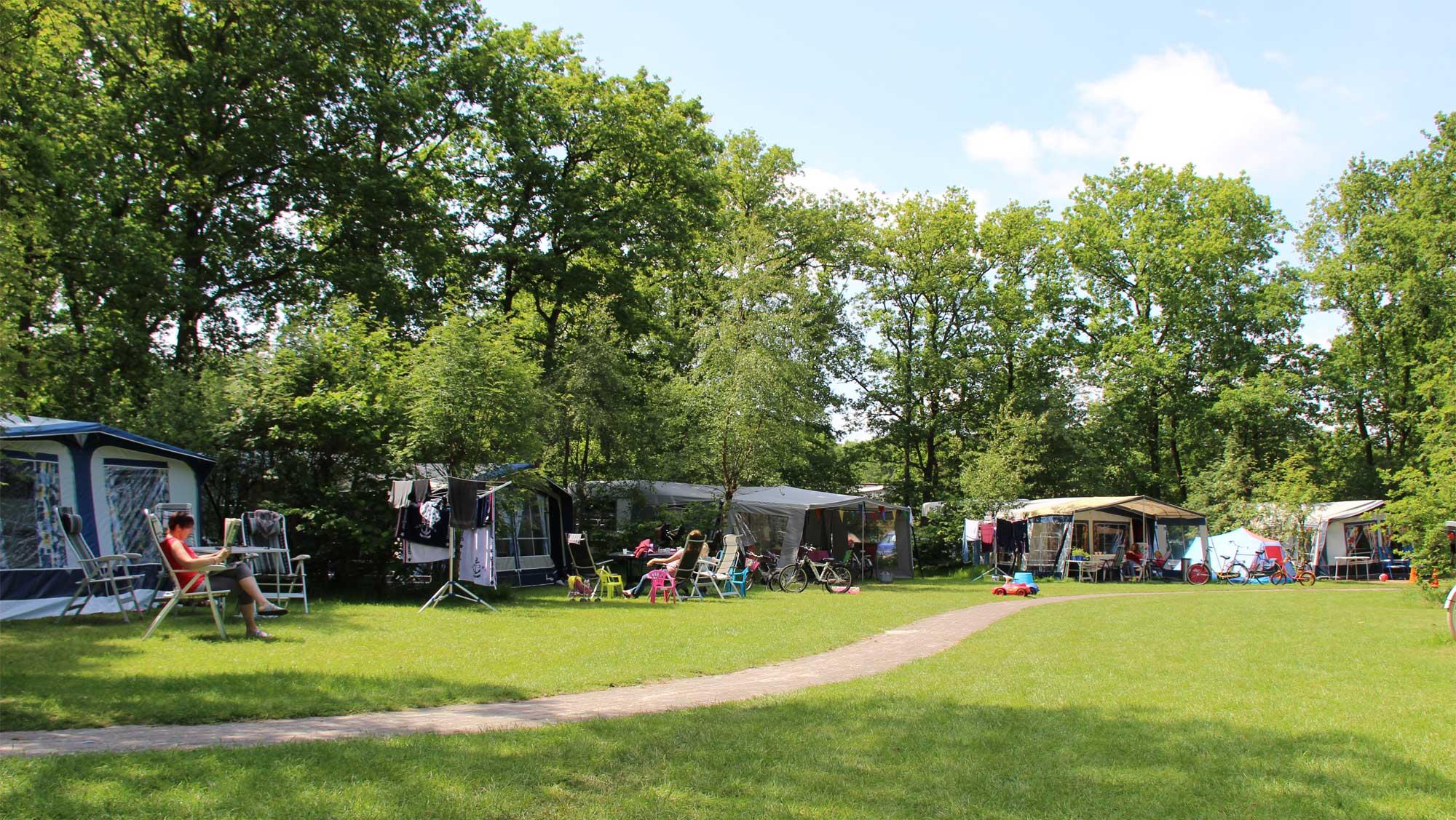 Comfortplaats B kamperen Molecaten Park t Hout 01