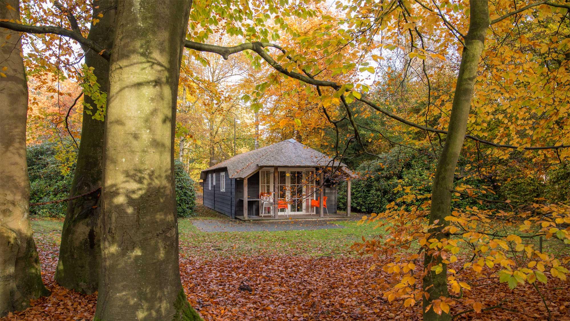 4pers bungalow Sprengen Molecaten Park De Leemkule 07 najaar herfst