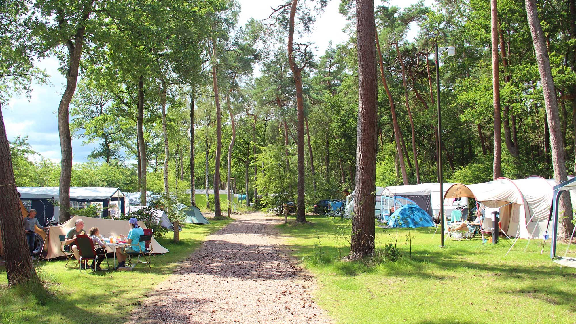 Comfortplaats kamperen Molecaten Park Kuierpad 04