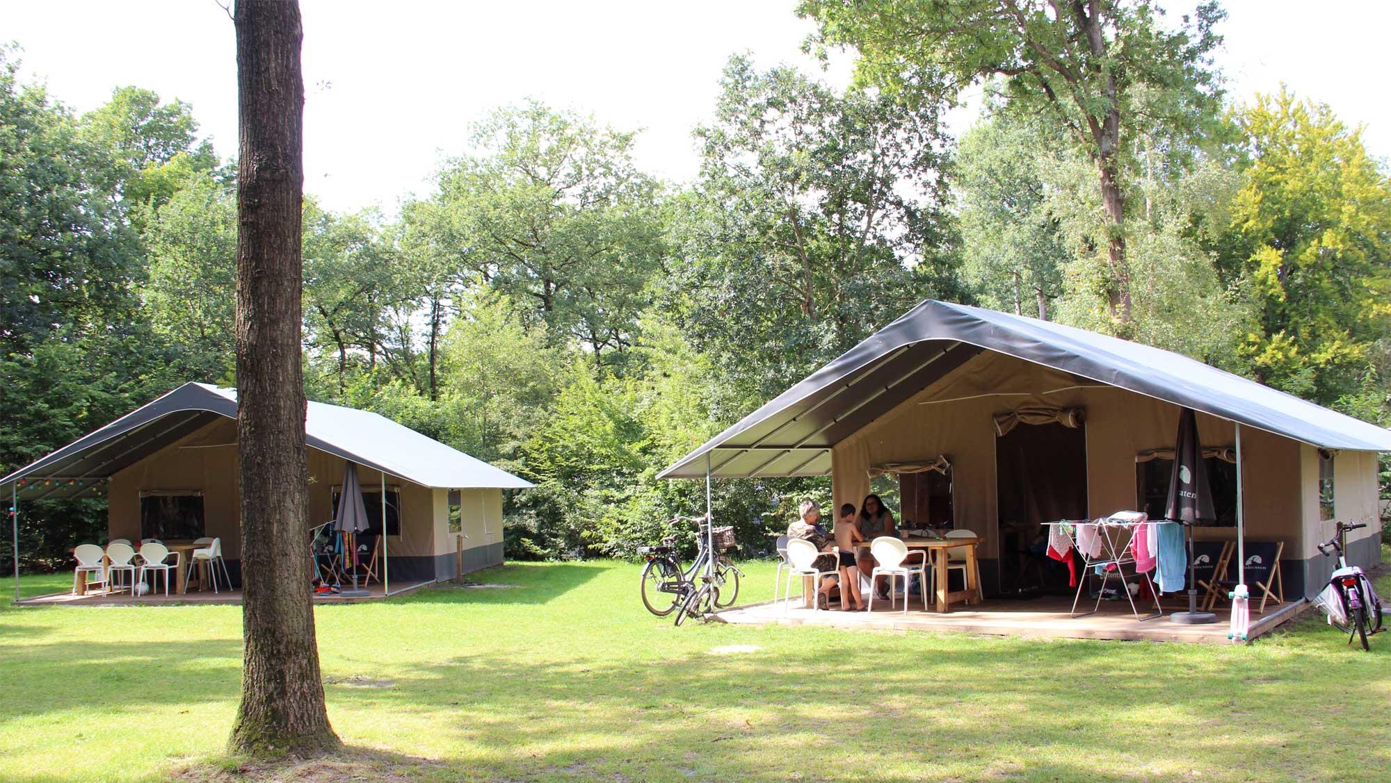 6pers ingerichte Fryske tent Molecaten Park t Hout 02