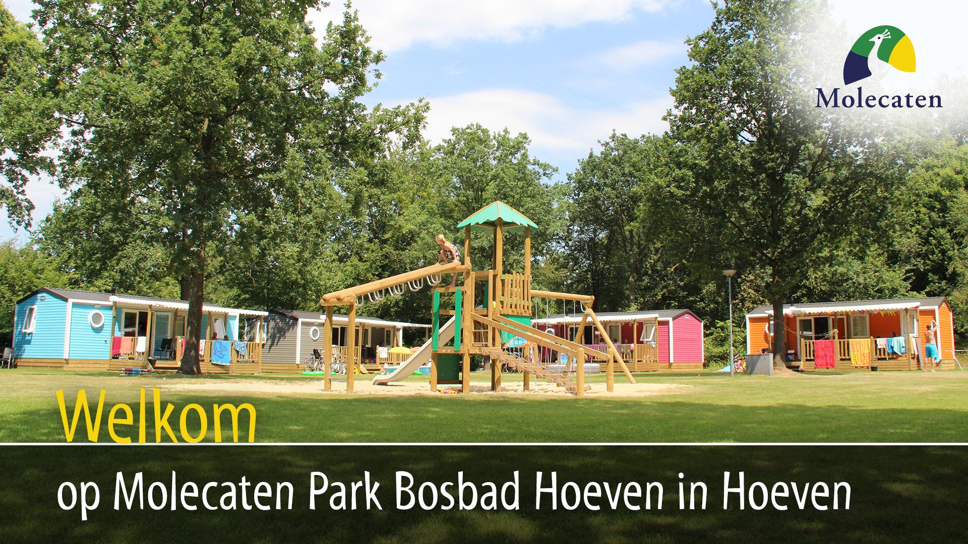 Molecaten Park Bosbad Hoeven in Hoeven