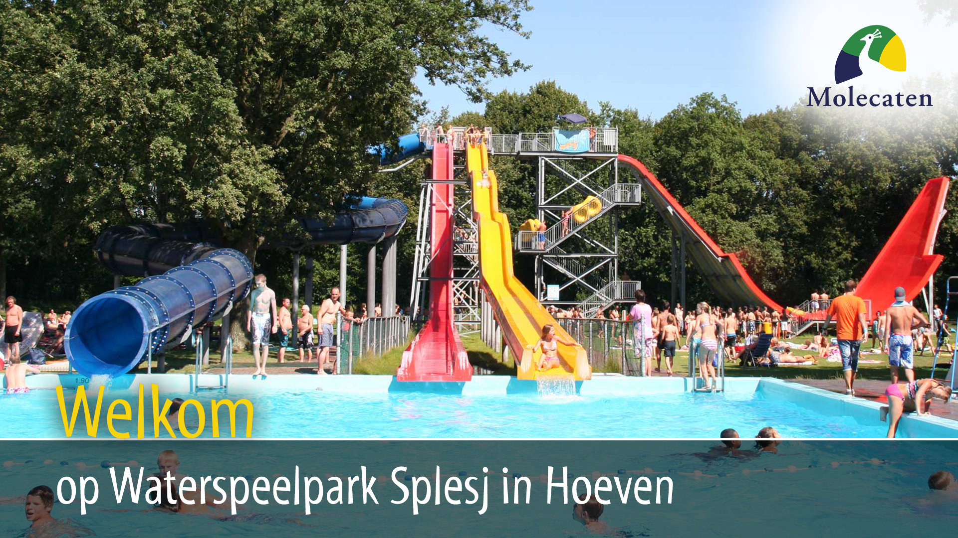 Molecaten Waterspeelpark Splesj in Hoeven