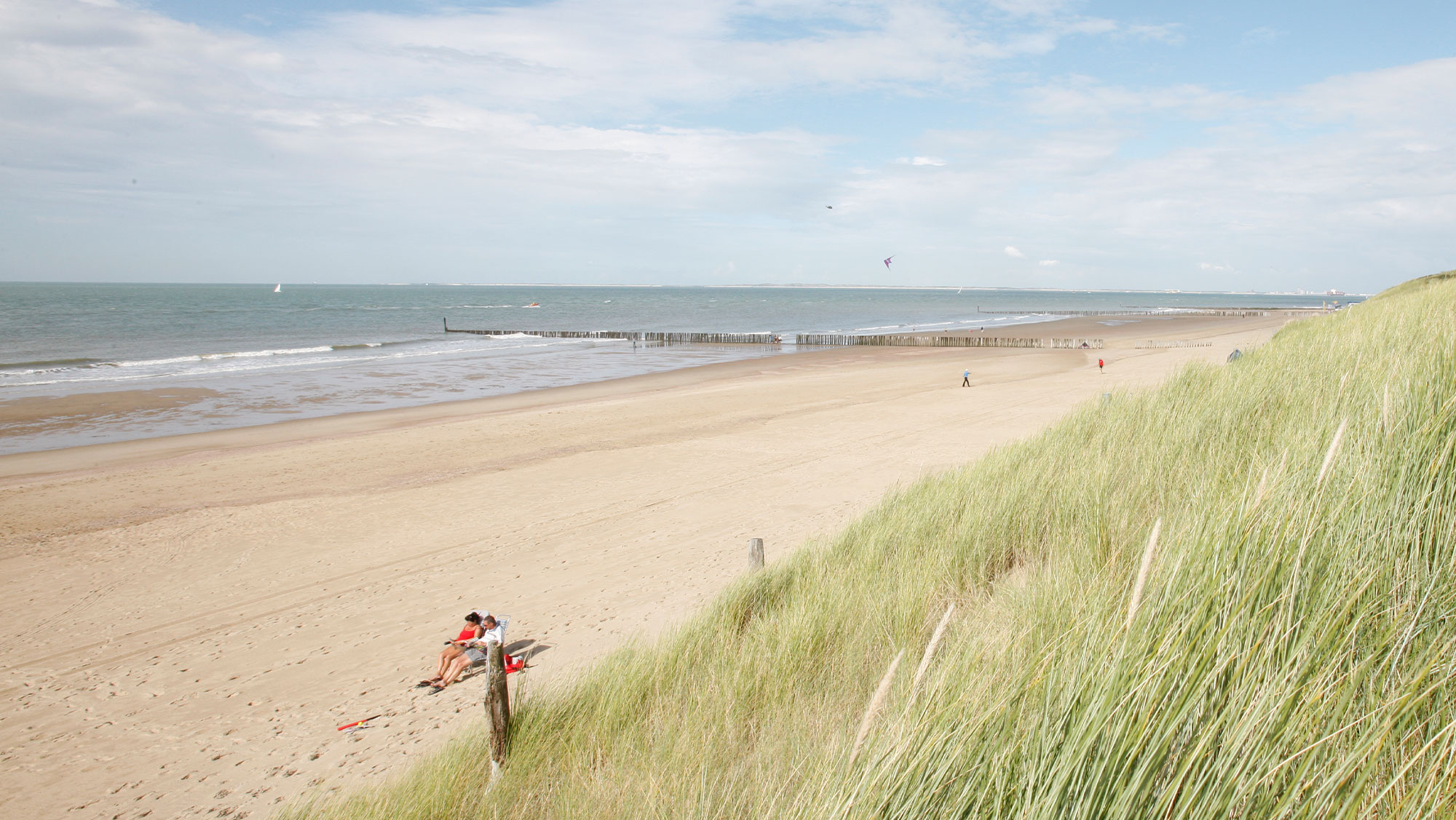 Omgeving Molecaten Park Hoogduin 06 strand en duinen