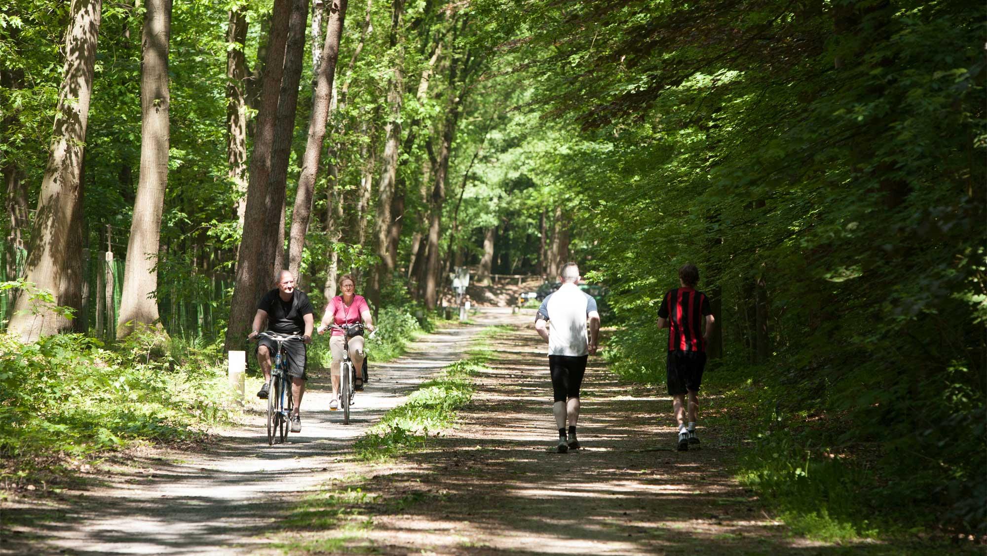 Omgeving Molecaten Park Bosbad Hoeven 02 fiets en wandelroutes