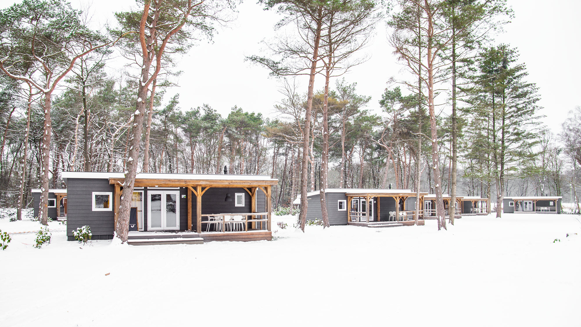 Molecaten winter in een bungalow in het bos 5
