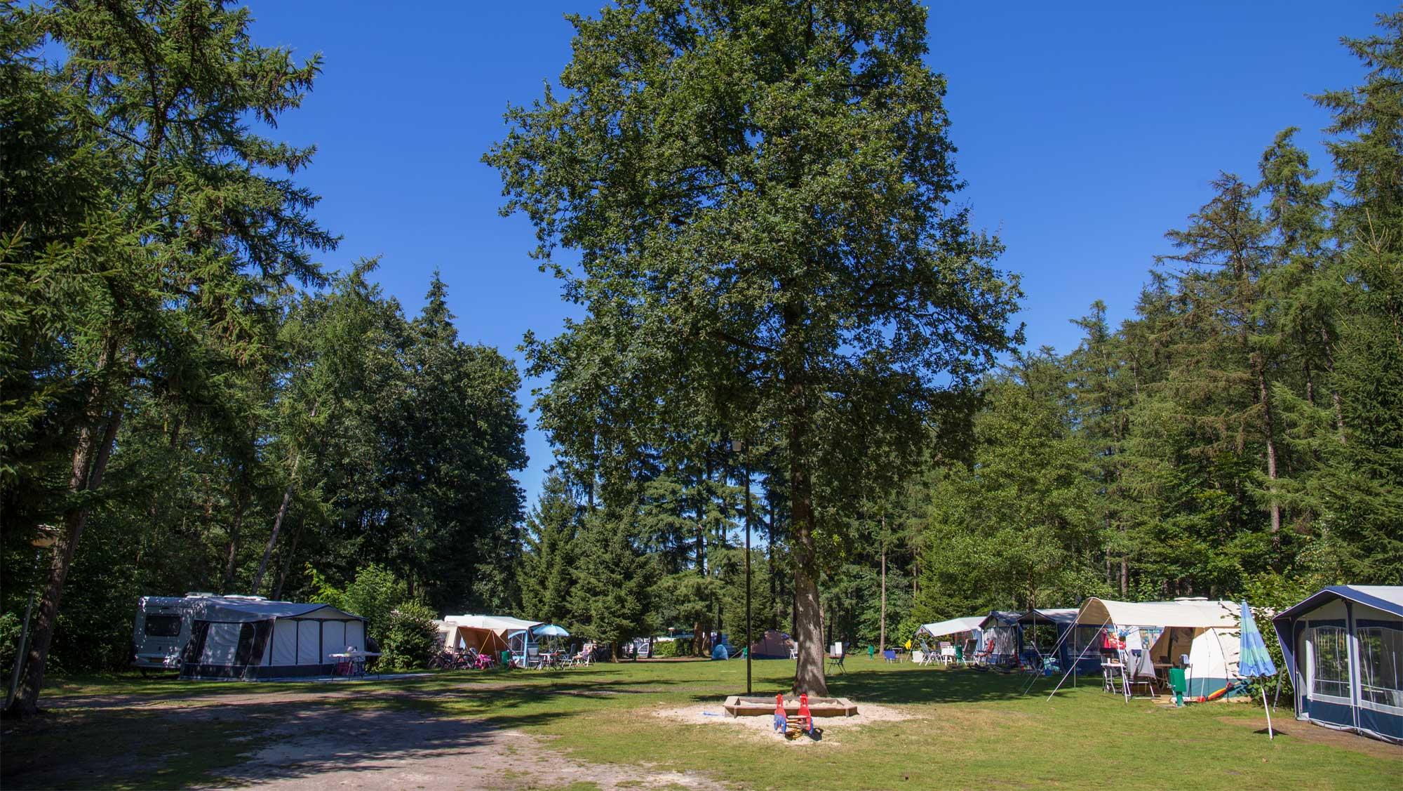 Comfortplaats kamperen Molecaten Park De Leemkule 07