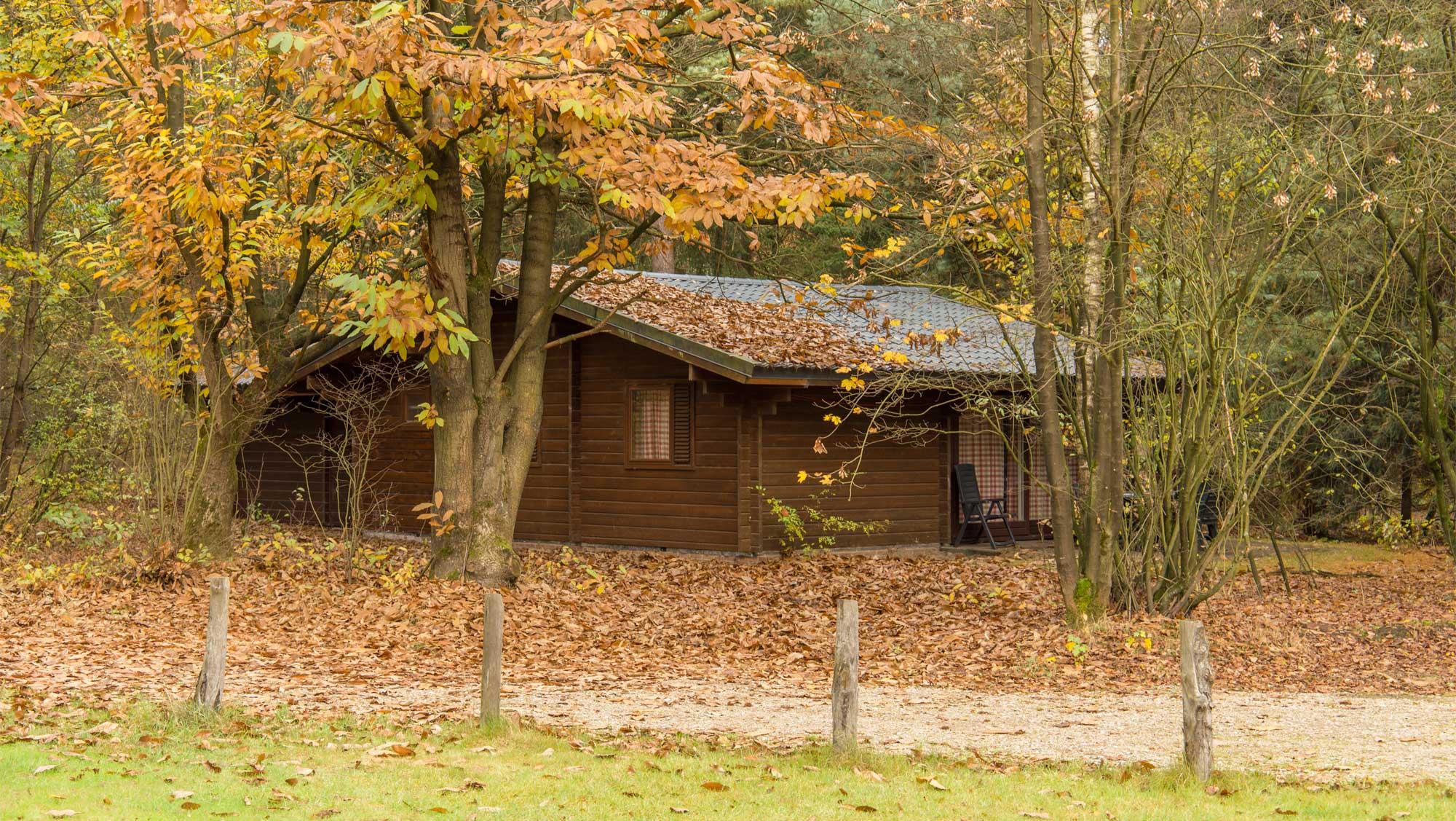 6pers bungalow Finse Molecaten Park Landgoed Ginkelduin 13 najaar herfst