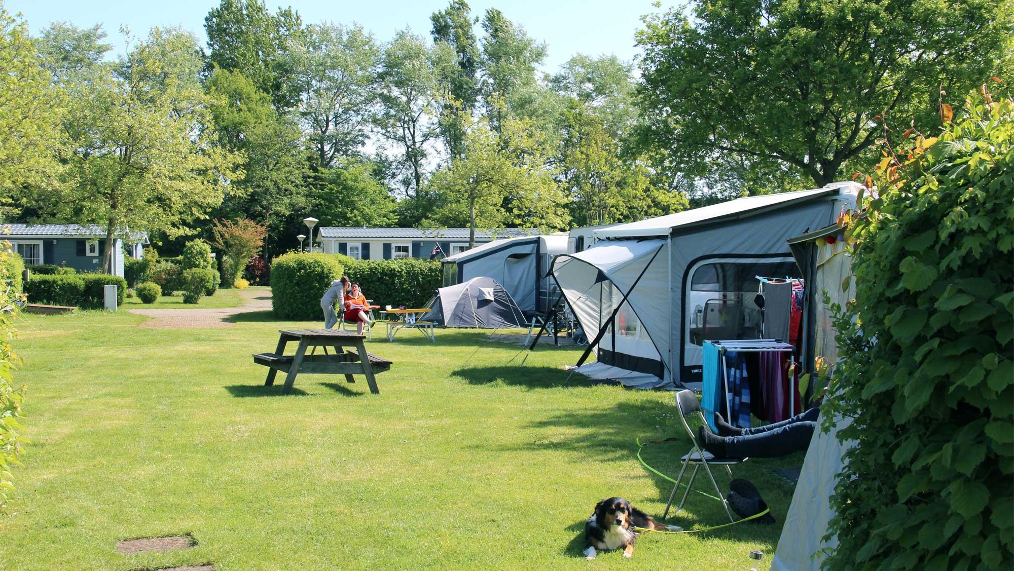Comfortplaats B kamperen Molecaten Park Wijde Blick 07