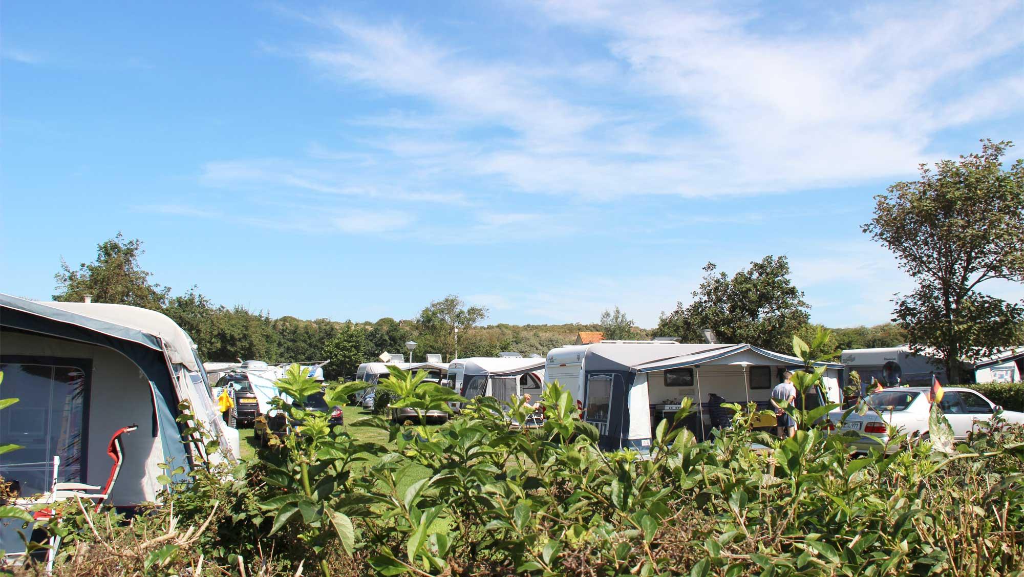 Comfortplaats vanaf 105m2 huisdierveld kamperen Molecaten Park Hoogduin 03