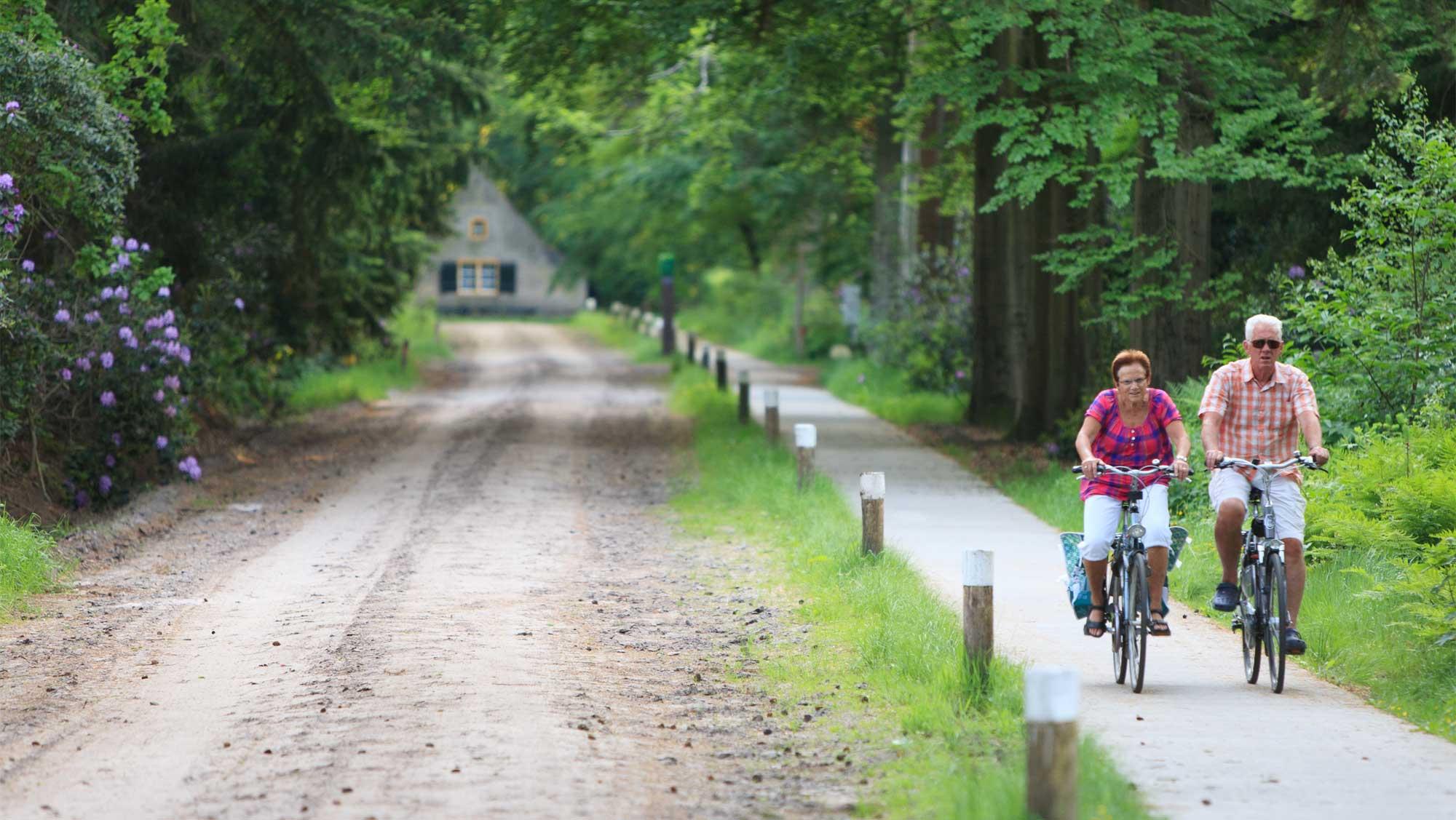 Omgeving Molecaten Park Bosbad Hoeven 13 fietsen