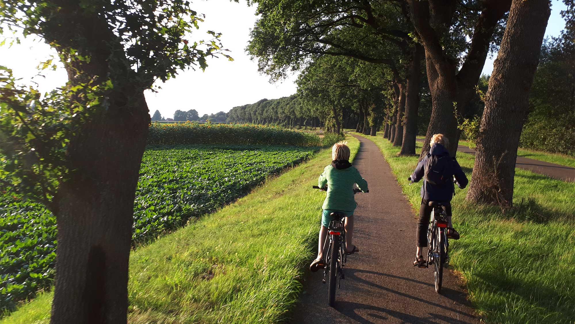 Omgeving Molecaten Park Kuierpad Drenthe 17 fietsen