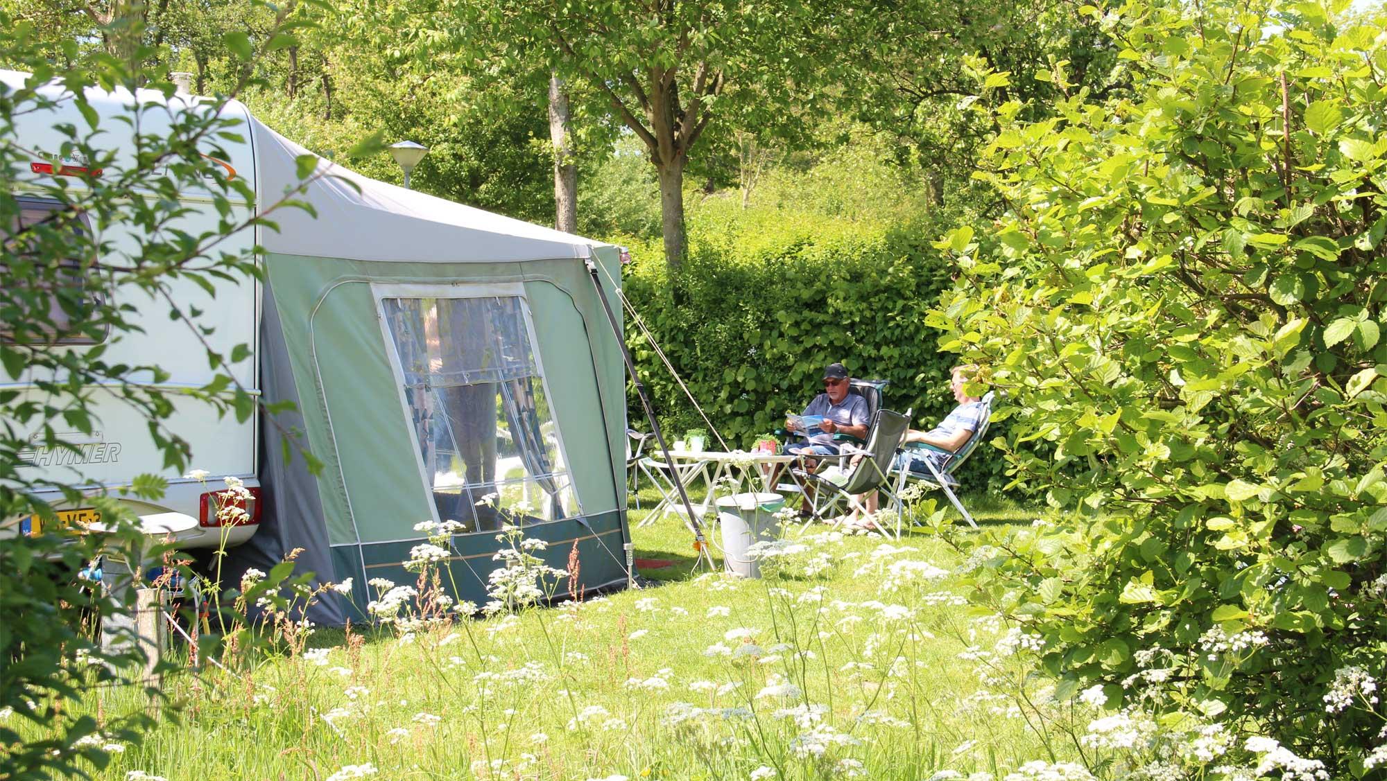 Molecaten Park Wijde Blick 02 camping