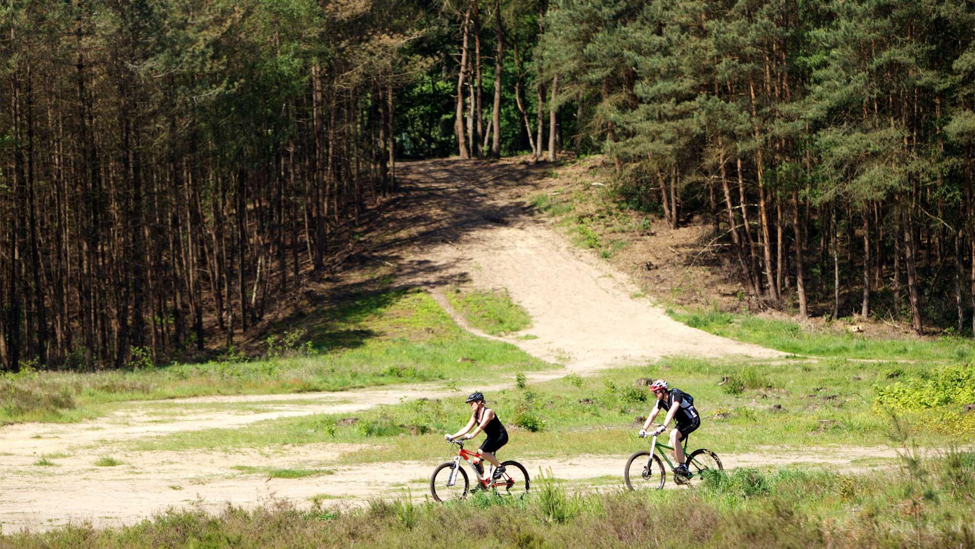 Omgeving Molecaten Park Landgoed Ginkelduin 06 mountainbiken