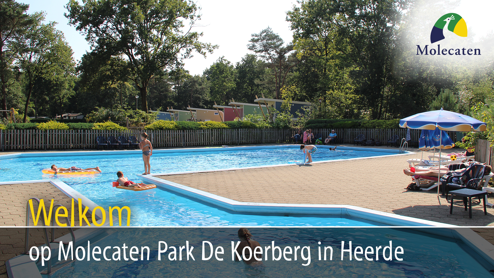 Molecaten Park De Koerberg in Heerde 2