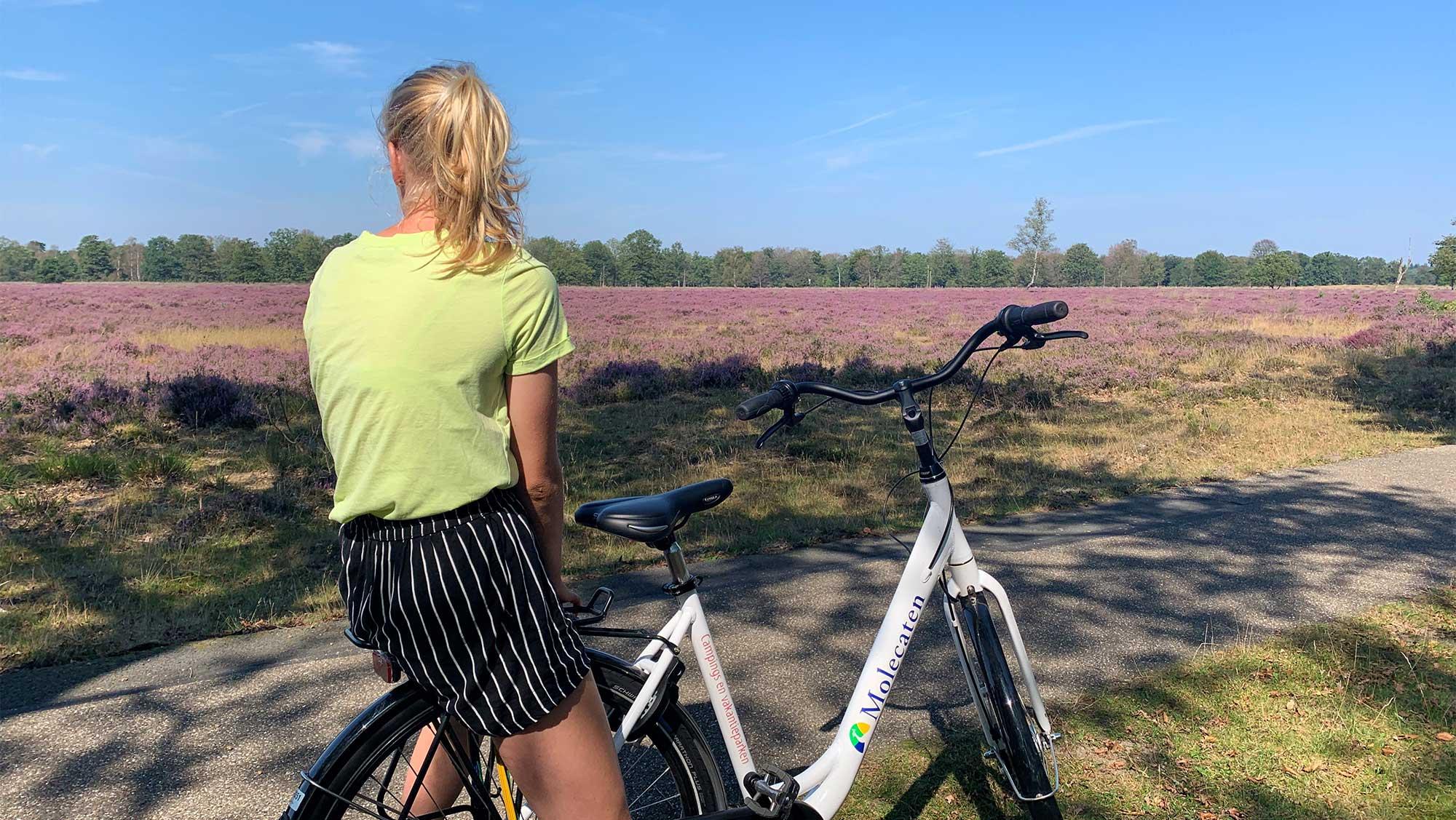 Omgeving Molecaten Park Kuierpad Drenthe 01 fietsen